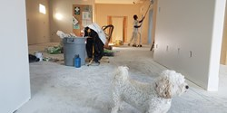 Image for Crawley Homeowners Beware: The Top Five Renovation Mistakes